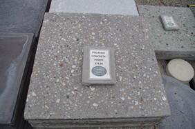 Polished Concrete Paver