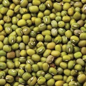Organic Mung Beans 100g