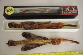 Deer Pizzle dried boxed large