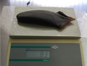 Super sized extra large dried deer tail