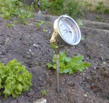 Soil Temperature Probe 300mm