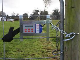Batt-Latch Pipe Gate Adapter