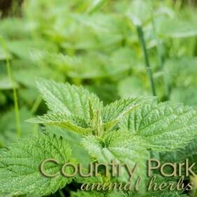 Country Park Nettle Leaf 1kg