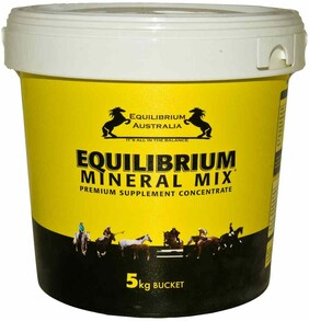 Equilibrium Yellow 5kg