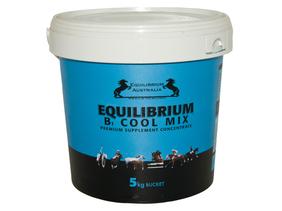 Equilibrium blue 5kg