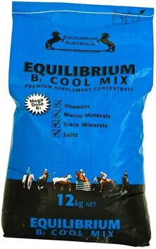 Equilibrium Blue 12kg