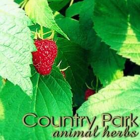 Country Park Raspberry Leaf 1kg