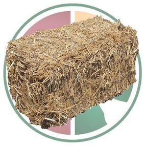 Bedding Straw