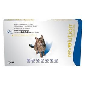 Revolution Cat Blue 6's