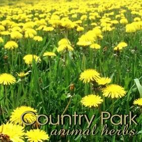Country Park Dandelion Leaf 1kg