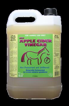 NRG Apple Cider 5L