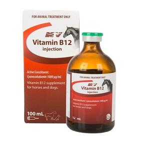 Nature Vet Vitamin B12 Nature Vet