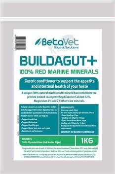 BuildaGut 1kg