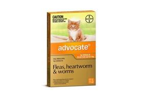 Advocate cat 0-4kg 1s