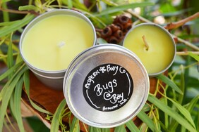 Bugs @ Bay Travel Tins