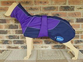 Large waterproof coat - Purple / Navy