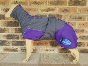 Medium waterproof coat - Dark grey / Purple